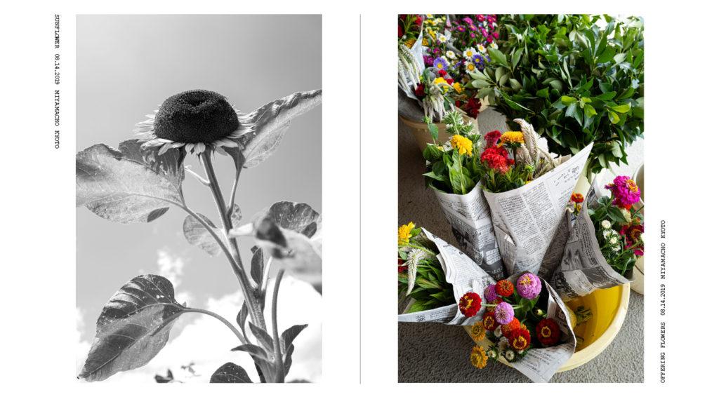 FLOWER 08'19-01